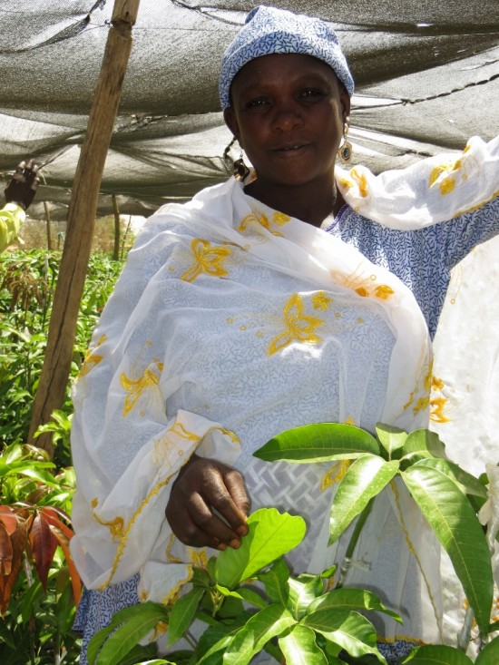 Each woman looks after her own plants and is responsible for marketing and selling them.