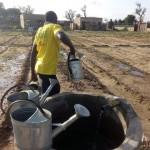 Irrigation 4